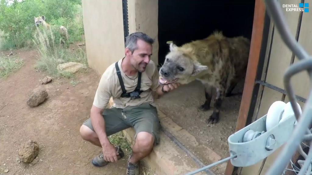 Wild-Animal-Dental-Surgery-with-Kevin-Richardson